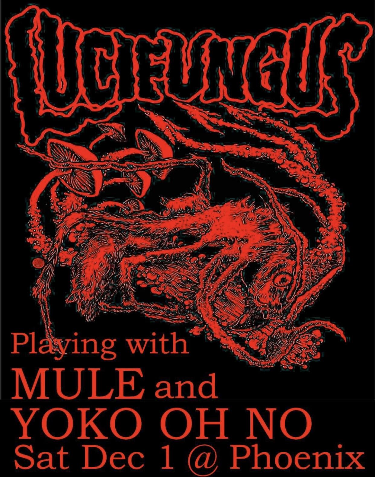 Lucifungus, Mule & Yoko Oh No Play The Phoenix