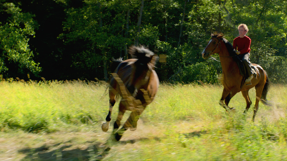 Out Stealing Horses [Ut og stjæle hester] — Scandinavian Film Festival 2019, Palace Electric