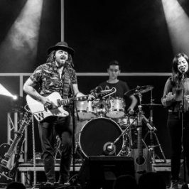 Canberra's Muddy Wolfe tell the harrowing story of 'Willie Allen' via a great song