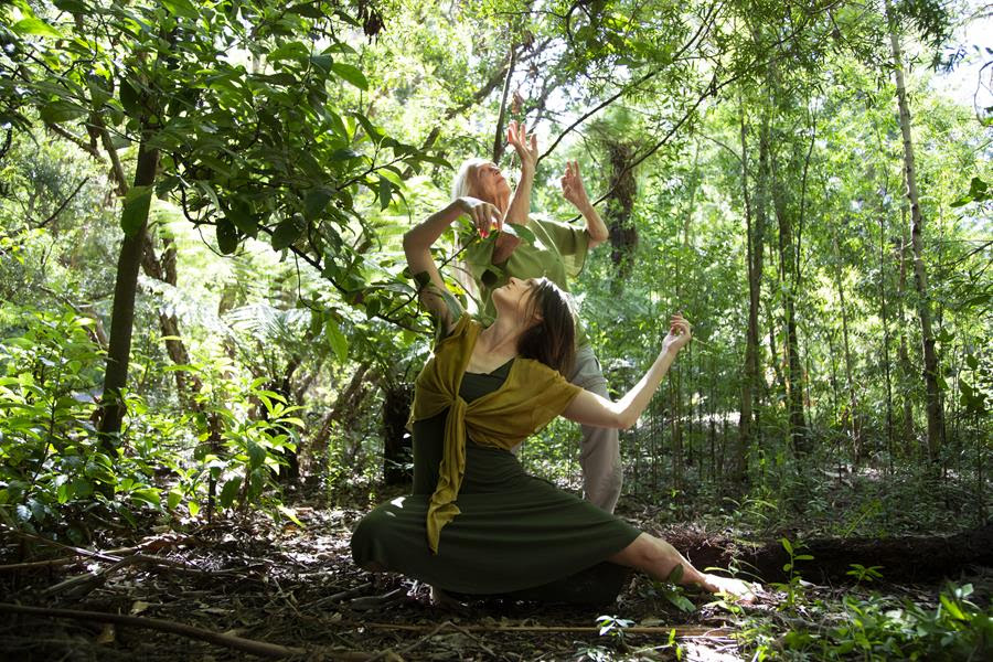 [Arts Review] Music-Nature-Dance combine to deliver a beautifully staged yet strongly stated message in Symbiosis @ Australian National Botanic Gardens (7 March)